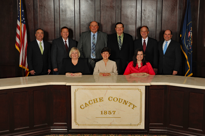 County Executive, County Council, County Clerk/Auditor